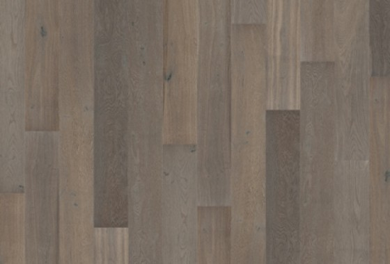 Driftwood Bretagne